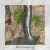 Natural Trumpet Hits by Various Artists