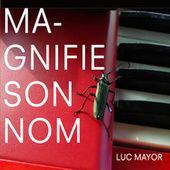 Magnifie son Nom by Luc Mayor