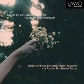 Så kort ein sommar menneska har - Songs by Gisle Kverndokk by Marianne Beate Kielland