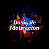 Dosis de Motivación de Various Artists