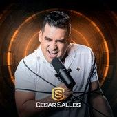 É Você o Meu Cèu fra Forrozão Cesar Salles