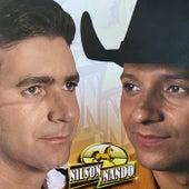 Nilson & Nando Vol. 3 de Nilson