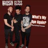 What's My Age Again? (Cover) di Broken Glass