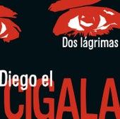 Dos lágrimas de Diego El Cigala