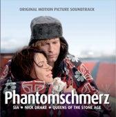 Phantomschmerz von Various Artists