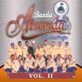 Vol. 2 de Banda Atrevida De Los Mejia