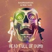 Head Full of Dumb de BadMoodRude