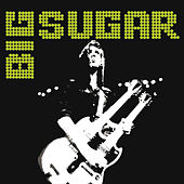Brothers And Sisters, Are You Ready? by Big Sugar