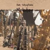 Own Saxophone Melodies by Various Artists