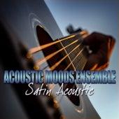 Satin Acoustic by Acoustic Moods Ensemble