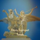 Horn Trumpet Tunes de Various Artists