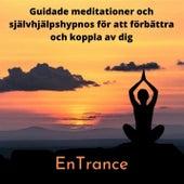 Guidade meditationer och självhjälpshypnos för att förbättra och koppla av dig by Entrance