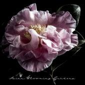 Asian Blooming Gardens: Spring Time, Living Nature, Oriental Meditation von Japanese Zen Shakuhachi