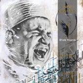 Malek El Molk by Cairo Steps