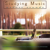 Studying Music: Study Music and Nature Sounds For Studying, Background Reading Music For Focus, Concentration and Relaxation Music With Forest Sounds de Studying Music