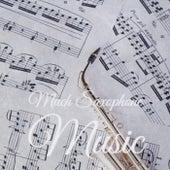 Much Saxophone Music de Various Artists