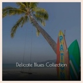 Delicate Blues Collection by Various Artists
