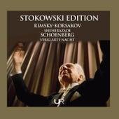 Stokowski Edition, Vol. 2 de Leopold Stokowski
