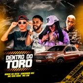 Dentro do Toro (feat. Bob Anne & Mc Gw) (Brega Funk) de XandinhoMc