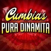 Cumbias Pura Dinamita de Various Artists
