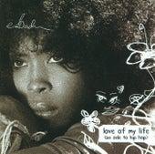 Love Of My Life (Ode To Hip Hop) de Erykah Badu