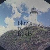 Blown Trumpet Beats von Various Artists