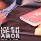 En Busca de Tu Amor by Semillas Reggae