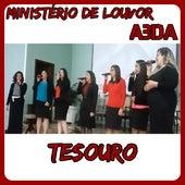Tesouro (Ao Vivo) by Ministério de Louvor AbdA