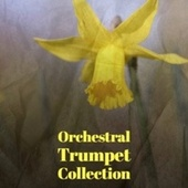 Orchestral Trumpet Collection by Various Artists