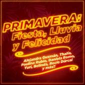 Primavera: Fiesta, Lluvia y Felicidad von Various Artists