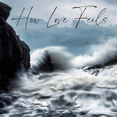 How Love Feels by Various Artists