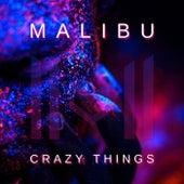 Crazy Things de Malibu