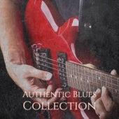 Authentic Blues Collection von Various Artists