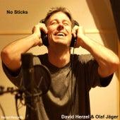No Sticks de David Herzel