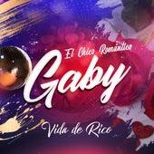 Vida de Rico (Cover) by Gaby El Chico Romántico