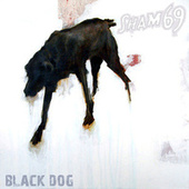 Black Dog by Sham 69