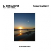 Summer Breeze de DJ Cam