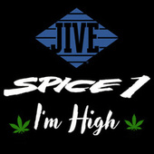 I'm High by Spice 1