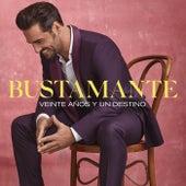 Veinte Años Y Un Destino von Bustamante