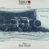 Remy by Seasoul