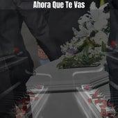 Ahora Que Te Vas (Cover) von Sair Pérez