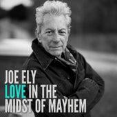 Love in the Midst of Mayhem de Joe Ely