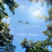 How I Feel by Nappy Roots