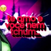 Sentimento Seu Nenhum (Funk Remix) de DJ Samir