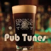 Pub Tunes by Craic in the Stone