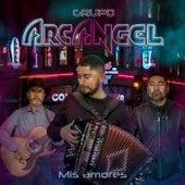 Mis Amores de Grupo Arcangel