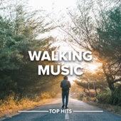Walking Music von Various Artists