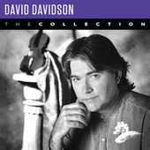 David Davidson: The Collection von David Davidson
