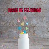 Dosis de Felicidad de Various Artists