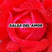 Salsa del amor de Various Artists